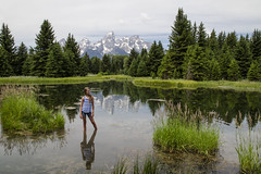 Schwabacher's Landing (AnitaBurke1) Tags: reflection scenic peaceful tranquil grandtetonnationalpark schwabacherslanding d5100 anitaburke