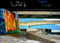 The flooded bridge. (❀ Rosemarie Christina ❀ [Slowly catching up]) Tags: bridge water graffiti sony picasa flooded zugersee dscr1 sonydscr1