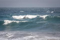 Hwy 1 Beach Dolphins 2 (Call_Me_Josh) Tags: ocean california water coast waves bigsur dolphins splash