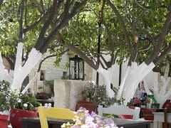 Lemon Tree Garden, Heraklion (camilla.ivesdal) Tags: restaurant greece crete lemontreegarden