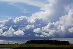 Dark and light. (artanglerPD) Tags: blue trees sky sunshine clouds fields beautifulclouds atmospheric