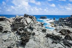 Maui-218 (Photography by Brian Lauer) Tags: ocean maui nakalele nakaleleblowhole nakalelepoint