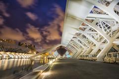 Valencia nocturna (christian&alicia) Tags: valencia architecture arquitectura sigma calatrava 1020 ciutatdelesarts christianalicia nikond7100