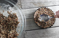 bird diy seed craft feeder