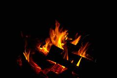(hommik) Tags: november fall love island estonia campfire aegna sgis welcometoestonia lke aegnaisland