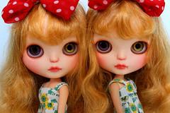 Mackenzie and Moon- TWINS! (sanxistreet (Love Note Studios)) Tags: cute love twins doll dolls twin note leopard blythe studios takara sass customs fbl lovenotecustoms lovenotestudios