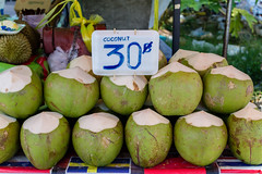 Young Coconut ('whitewithone) Tags: beach thailand coconut phuket patong