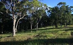 Lot 106, Duns Creek Road, Duns Creek NSW