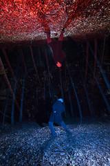 Deep forest (Q'bot) Tags: park las trees light lightpainting night painting deep upper jungle góry modell marlena śląsk nocą segiet bytom malowanie qbot tarnowskie światłem qbotcenko qbotpro sileria