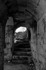Chteau de Verneuil-en-Halatte - Oise (DavidB1977) Tags: bw france nikon nb porte chteau escalier ruines 18105 vestiges oise d90 picardi verneuilenhalatte