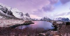Velvia 50 Panorama - Reine, Norway (magnus.joensson) Tags: panorama mountain norway zeiss sunrise landscape nikon fuji outdoor 28mm norwegian velvia filter carl fujifilm mountainside 50 lofoten reine nikonfe warming exp distagon 81a zf2 exp2006 nikonflickraward