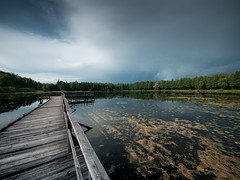 After Rain -Topio (LAZUR tomek pietek) Tags: bridge lake rain clouds dark board platform bialowieza after trap jezioro gangboard topio topilo biaowieza