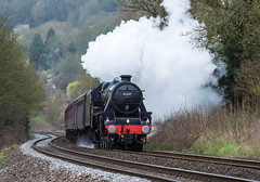Stanier Black 5 (Steve Franklin Images) Tags: steam steamtrain steamengine train stainer black5 limpleystoke wiltshire unitedkingdom