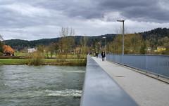 Most preko Ljubljanice (rlubej) Tags: ljubljana animals rivers ljubljanica bridges people