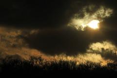 Nachmittagshimmel im Februar (2) (Rüdiger Stehn) Tags: sonne sonnenuntergang 2000er 2000s europa mitteleuropa deutschland germany norddeutschland schleswigholstein altenholz altenholzstift himmel wolken 2017