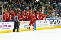 "Missouri Mavericks vs. Allen Americans, March 3, 2017, Silverstein Eye Centers Arena, Independence, Missouri.  Photo: John Howe / Howe Creative Photography • <a style=""font-size:0.8em;"" href=""http://www.flickr.com/photos/134016632@N02/33117919822/"" target=""_blank"">View on Flickr</a>"