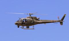EB-1027 (celso.mazzei) Tags: exército helicópteros esquilo ha1 fennecflir air aeroporto avião aeronave aviação aerodromo aérea aircraft airplane airforce