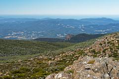 20170304-31-Northwest Bay River valley leading to Cathedral Rock (Roger T Wong) Tags: 2017 australia cathedralrock hobart mtwellington rogertwong sel70300g sony70300 sonya7ii sonyalpha7ii sonyfe70300mmf2556goss sonyilce7m2 tasmania tharkridge wellingtonpark bushwalk hike outdoors tramp walk