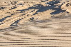 2017 0308 St. Joe Pier-89 (greenshots32) Tags: mckenziehassle michellehassle nature silverbeach snowandice tiscorniabeach tiscorniapier beach bigwaves seagulls sunset winter