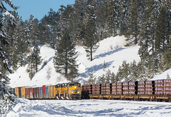 Meeting the Unit Pipe Train (Jake Miille) Tags: unionpacific trains railroad freighttrain snow winter pipetrain meet manifest nordencalifornia uprosevillesubdivision donnerpass donnerpassroute