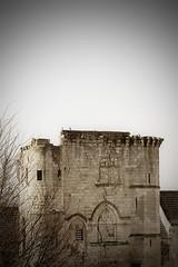 (Ombre&Lumiere) Tags: xiiie xive xve marizysaintmard aisne picardie patrimoine vestiges ruines 02 ancienneabbayefortifiée xviie fortifications