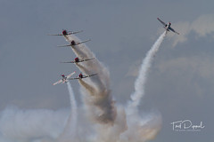 SnF20150425-1517.jpg (flyer_2001) Tags: skytypers prattwhitney usa lakelandairport r1340an1 formations geico florida displayteam northamerican snj2 sunnfun pw lakeland