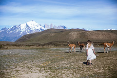 Torres Del Paine National Park (Lichon photography) Tags: lichonphotography travel argentina chile spring landscape nature guanaco explore mountain torres del paine national park slefie me woman girl female walking back long hair blond dress dreaming digitalmanipulation