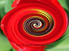 Twirl 24 (PhotosbyJim) Tags: twirl patterns