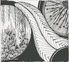 Circles in Black by Sharla R. Hicks, Certified Zentangle Teacher (Sharla R. Hicks CZT) Tags: doodle zendoodle zentangleinspiredart sharlarhickscertifiedzentangleteacherczt