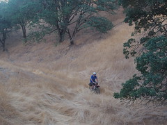 There was a creek there. (MannyAcosta) Tags: bike tom james flickr sam mark shell sean ridge works warren soma overnight rivendell tilden rive s240