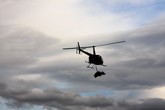 calf sling (shoots canons) Tags: silhouette alaska clouds cloudy wildlife aviation moose helicopter sling fieldwork capture calf robinson robinsonr44 alaskapeninsula slinging r44 moosecalf alcesalces immobilization wildlifewednesday chemicalimmobilization