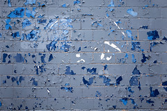 will the circle be unbroken (beckstei) Tags: blue canada abstract abandoned geometric pool nova wall wire peeling paint decay windsor scotia