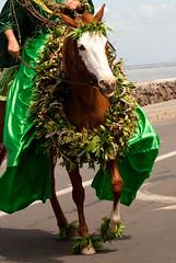 LV-314 (Bombshell Society) Tags: kamehameha maui parade pau thealohalifestyle