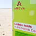 Areva protecting lichen fields in Namibia