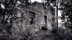 Forgotten Wall B&W (EOSPhotography2014) Tags: old building wall germany bayern bavaria alt ruine forgotten tamron wald burg abriss allgu 17mm vergessen kempten schusterei eos700d
