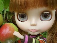 Little apple thief