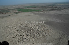 Tulul Abu Fatas? (38RNA640375) (APAAME) Tags: archaeology ancienthistory iraq middleeast airphoto oblique aerialphotography aerialphotograph geocity aerialarchaeology camera:model=nikond70 geocountry exif:focallength=18mm camera:make=nikoncorporation exif:make=nikoncorporation geostate exif:model=nikond70 exif:lens=180700mmf3545 exif:aperture=ƒ80 exif:isospeed=200 tululabufatas pleiades:depicts=912966 geo:location=to31971707419456773539575tululabufatas38rna640375 geo:lon=45679172 geo:lat=31971655