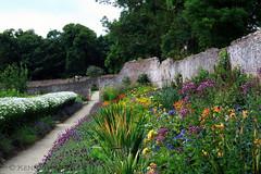 Colclough Walled Garden (Ken Meegan) Tags: flowers ireland garden walledgarden tinternabbey cowexford saltmills colcloughwalledgarden