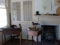 Naturalist Room 2013