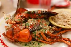 Lobster at Summer Shack, Boston! (Apricot Cafe) Tags: boston night dinner cityscape unitedstates massachusetts gourmet summershack unitedstatusofameriaアメリカ合衆国 bostonボストン sigma35mmf14dghsm lobsterロブスター img65159