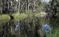 103 Orara Road, Lanitza NSW