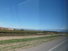 In the bus towards Puente del Inca