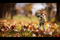 Go go go! (Art by Vins) Tags: autumn trooper colors fun toy toys photography leaf amazon bokeh figure 5d figurine clone sideshow yotsuba danbo revoltech danboard 5dmkii cartox
