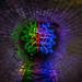 Urbex Drain Brain