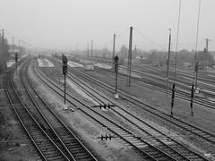 Landshut Hbf (wpt1967) Tags: bahnhof station landshut sw bw wpt1967 hauptbahnhof schienen