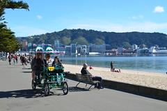 Comme en été à Wellington