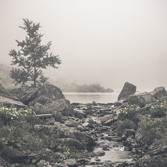 (n_such) Tags: lake fog montagne square landscape sony lac paysage brouillard a7 montain