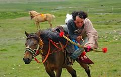 Tibetan Nomads are Masters on Horseback, Tibet 2014 (reurinkjan) Tags: 2014 easterntibet བོད་ལྗོངས། ©janreurink tibetanponies amdoཨ༌མདོ tibetanplateauབོད་མཐོ་སྒང་bötogang tibetབོད horseརྟ།rta nyachukaཉག་ཆུ་ཁ།county nomadicareaའབྲོག་པའི་སbrogpaisa tibetannationalitytibetansབོད་རིགས།bodrigs horseofexcellentརྟ་མཆོག་rtamchog horseriderསྐྱ་མི།སྐྱ་མྱི།skyamiskyamyikyami tibetannationtibetanpeopleབོད་ཀྱི་མི་བརྒྱུདbökyimigyü nomadསོག་ཡུལ་གྱི་འབྲོག་པsokyülgyindrokpa individualnoncollectivizednomadsཁེར་རྐྱང་འབྲོག་པkherkyangdrokpa nomadswhoareadeptattamingcattleཕྱུགས་འདུལ་བ་ལ་རབ་ཏུ་མཁས་པའི་འབྲོག་པchundülbalaraptukhepédrokpa nomadrichincattlecattlewealthཕྱུགས་ཀྱིས་ཕྱུག་chukkyichuk nomadslivinggrazingplaceགཟས་སzesa horseརྔོག་མ་ཅནngokmachen nomadsའབྲོག་པ།brogpadrokpa khamཁམས་བོད ༢༠༡༤ mastersonhorseback