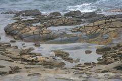 (brian dean bollman) Tags: sandstone lajolla sandiegoca sandiegocounty