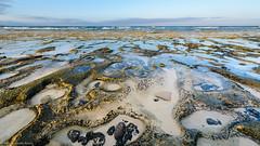Playa_de_Bajo_Negro-1825.jpg (rubiafruticosa4) Tags: españa canarias laoliva